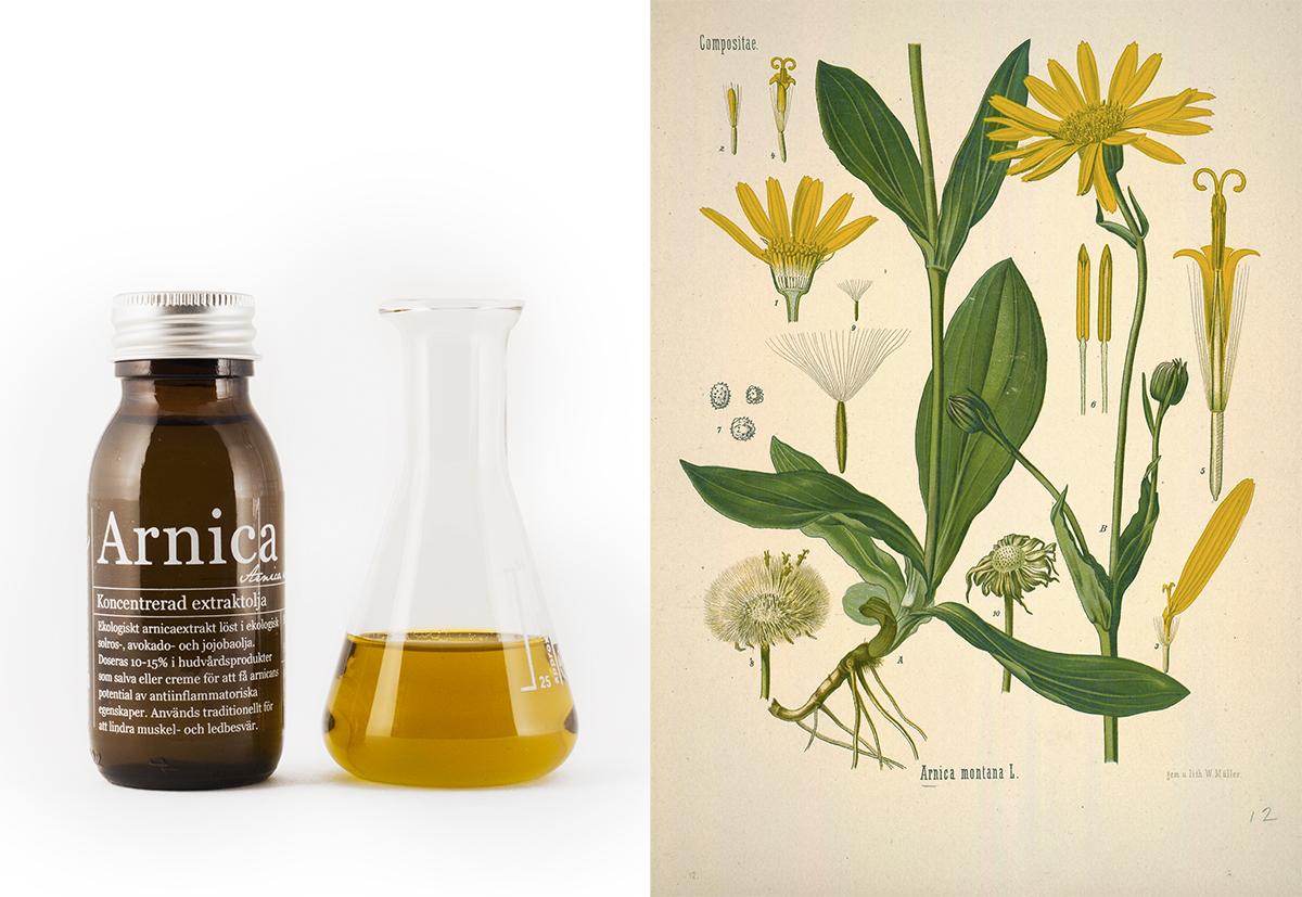 Ekologisk Arnicaolja - Organic Makers