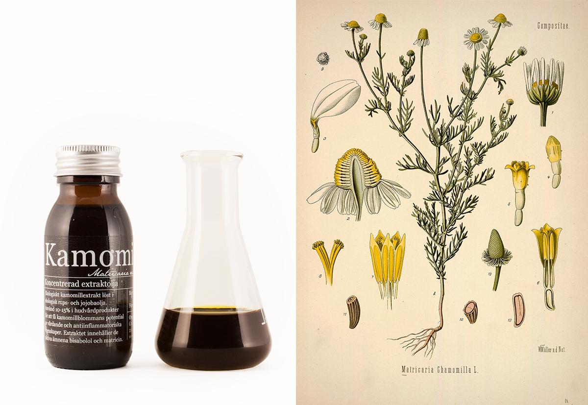 Ekologisk Kamomillolja - Organic Makers