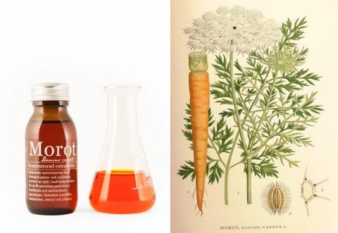 Ekologisk morotsolja - Organic Makers