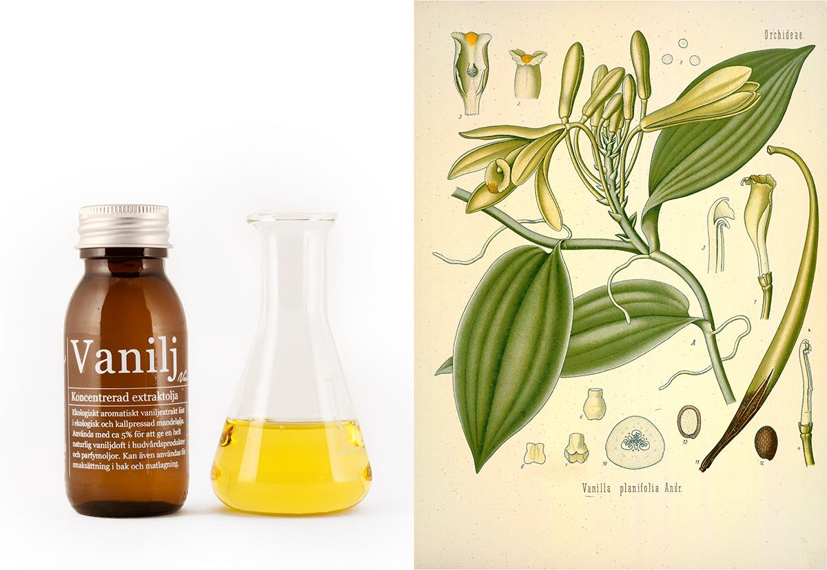 Ekologisk vaniljolja - Organic Makers