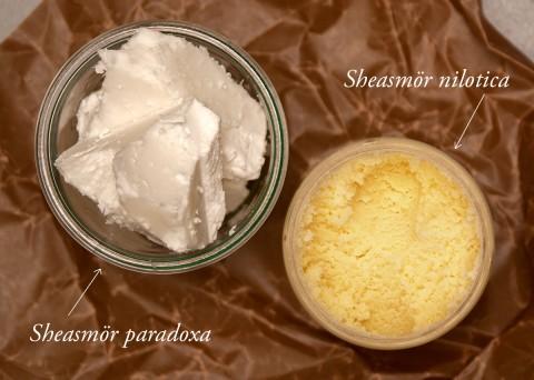 Sheasmör paradoxa och nilotica - Organic Makers