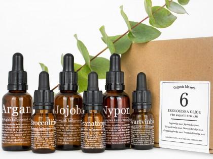 Oljekit; 6 olika oljor för fantastisk ekologisk hudvård