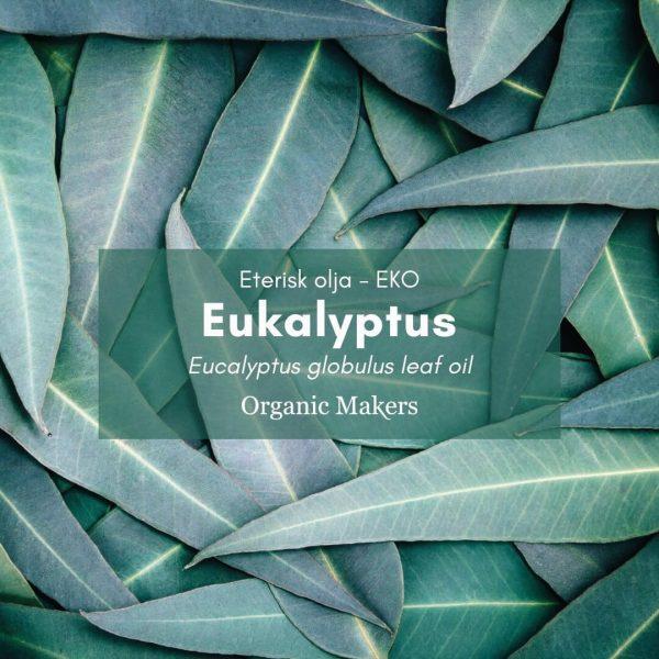 Eukalyptus eterisk olja, ekologisk, för hudvårdstillverkare
