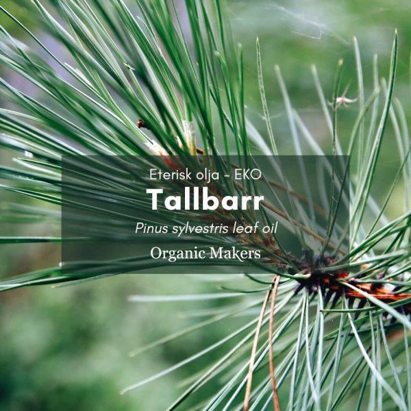 Tallbarr eterisk olja, ekologisk, för hudvårdstillverkare