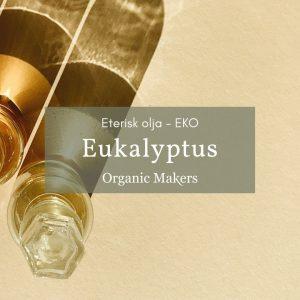 Ekologisk eterisk olja eukalyptus i storpack