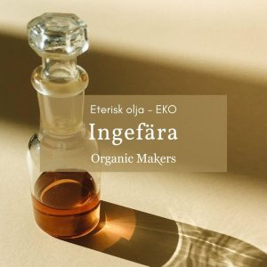 Ekologisk eterisk olja ingefära i storpack